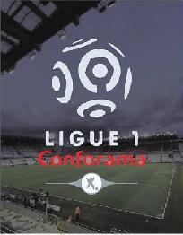 channel sepak bola liga perancis
